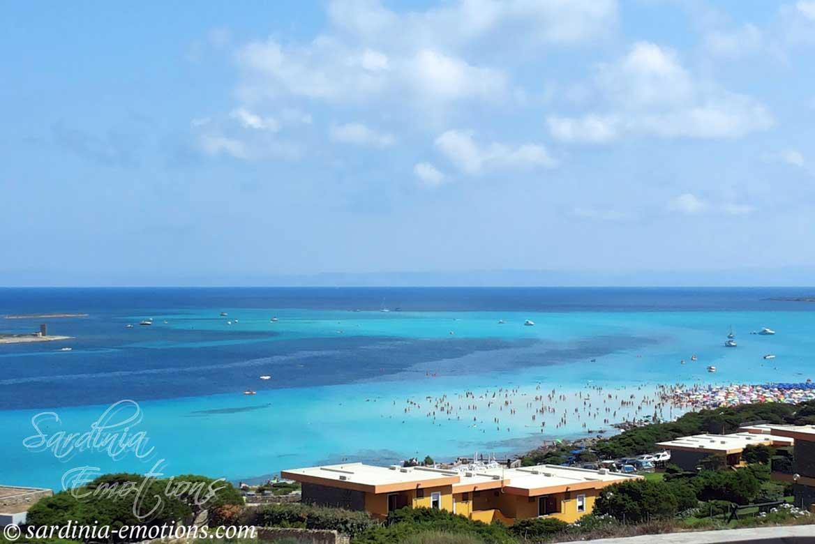 Szardínia legszebb strandja, La Pelosa