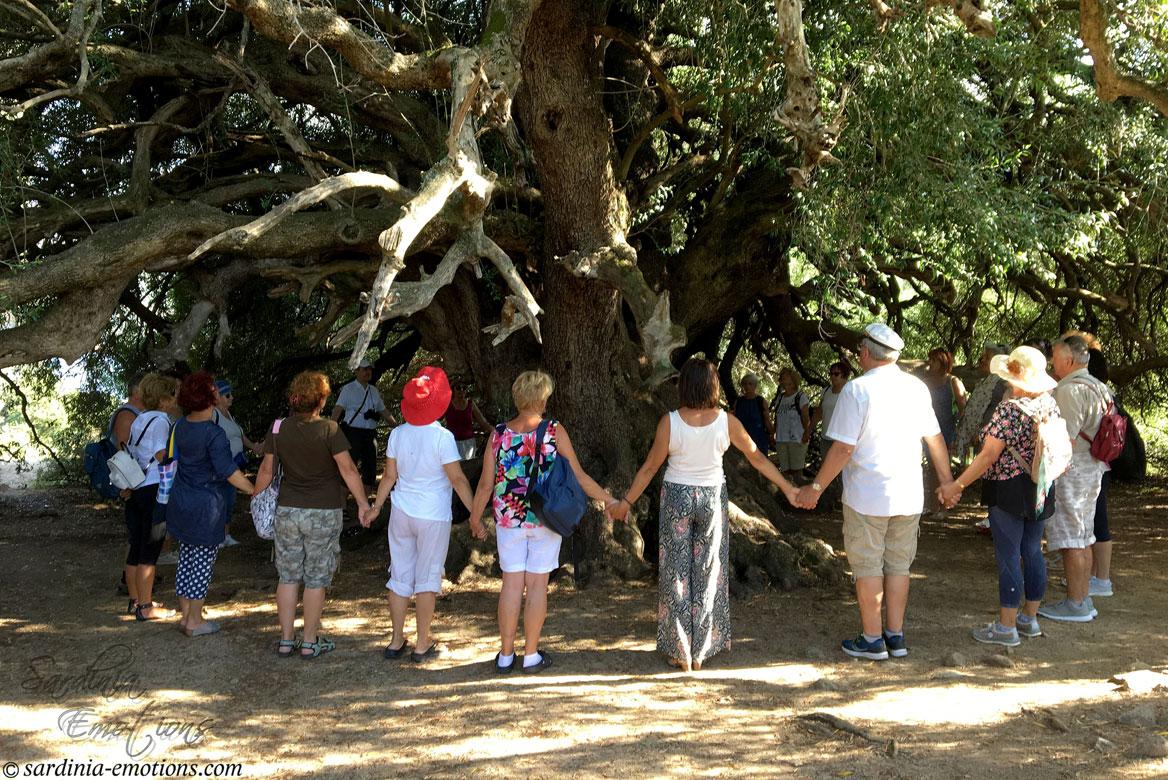 Gruppenreise auf Sardinien